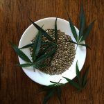 Is Hemp Protein Powder The Perfect Supplement?